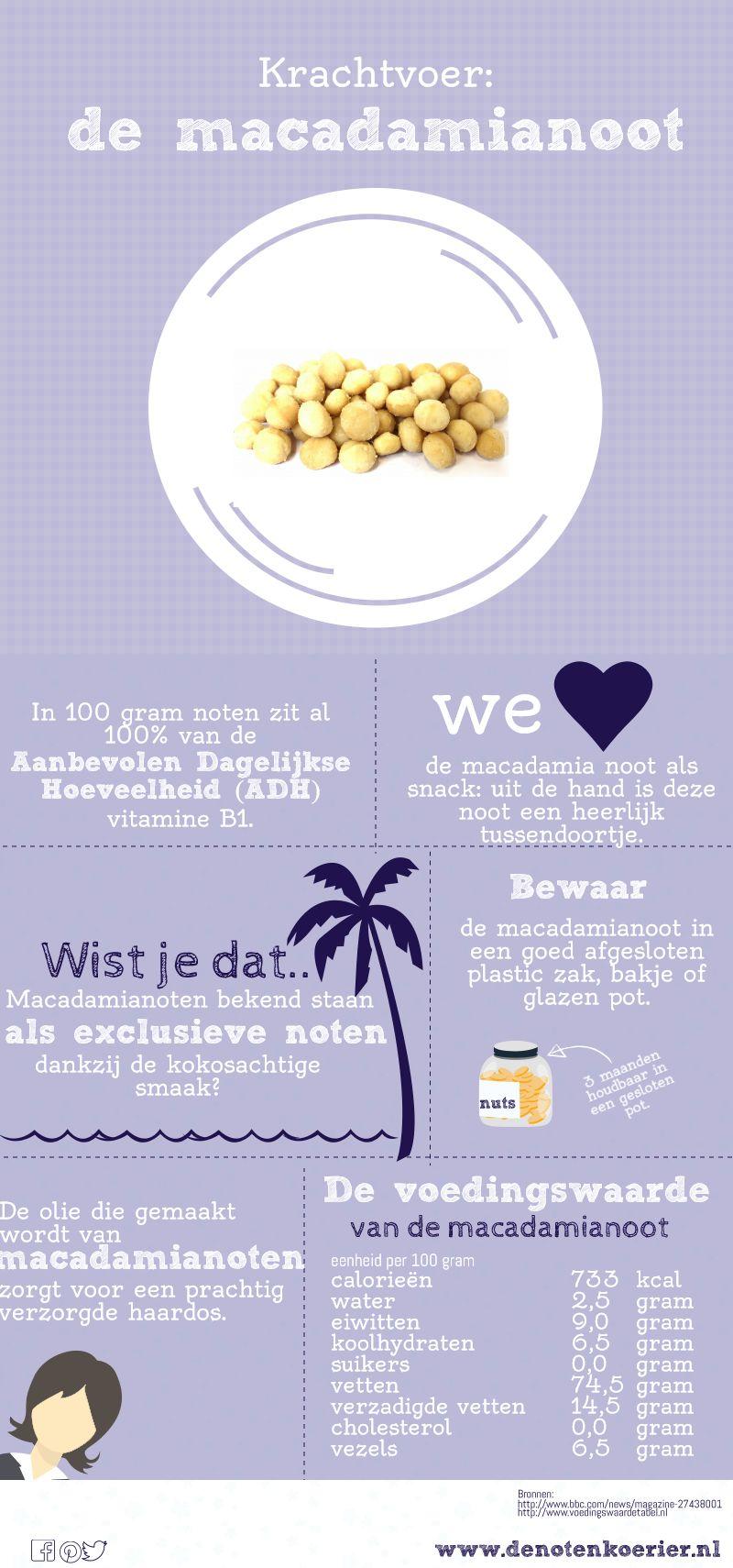 infographic macadamia noten